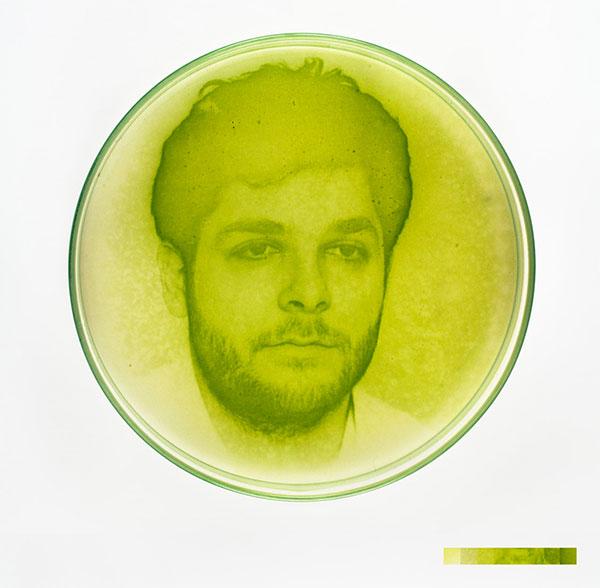 algae-photographs-5
