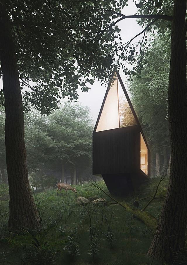 cabin-forrest-5