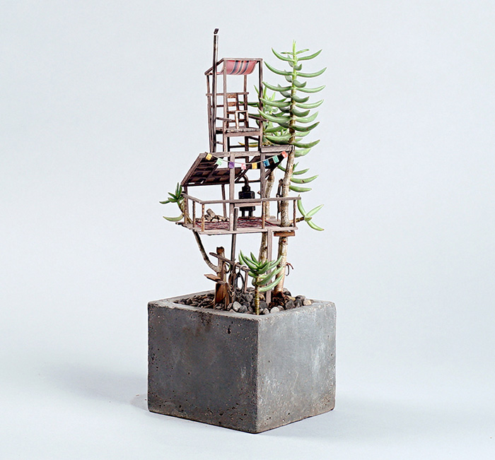 jedediah-voltz-somewhere-small-succulent-and-cacti-treehouses-1