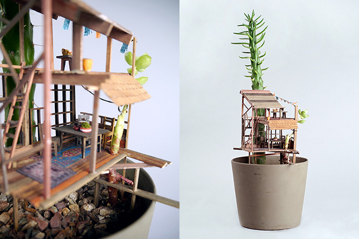 jedediah-voltz-somewhere-small-succulent-and-cacti-treehouses-3
