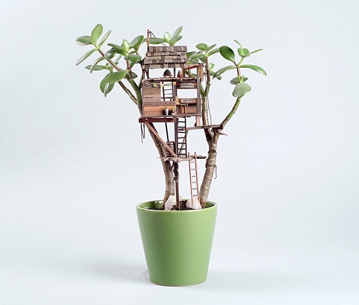 jedediah-voltz-somewhere-small-succulent-and-cacti-treehouses-4